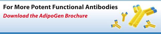 Functional Antibodies Catalog