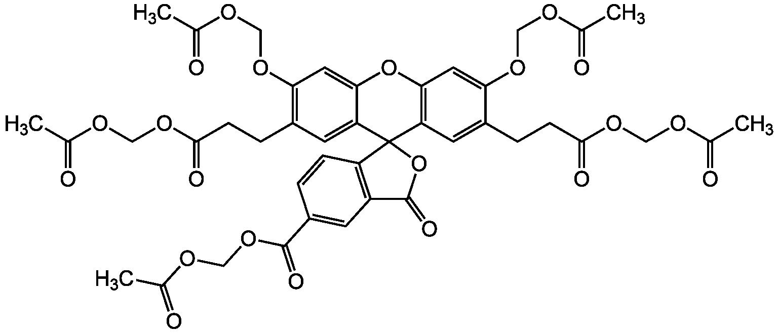 BCECF-AM